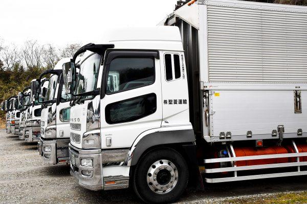 関東を中心に一般貨物の運搬業務を行っています